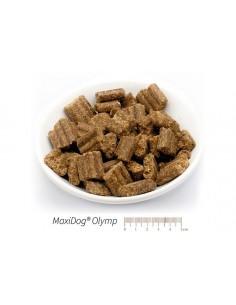 MaxiDog® Olymp