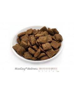 MaxiDog Wellness